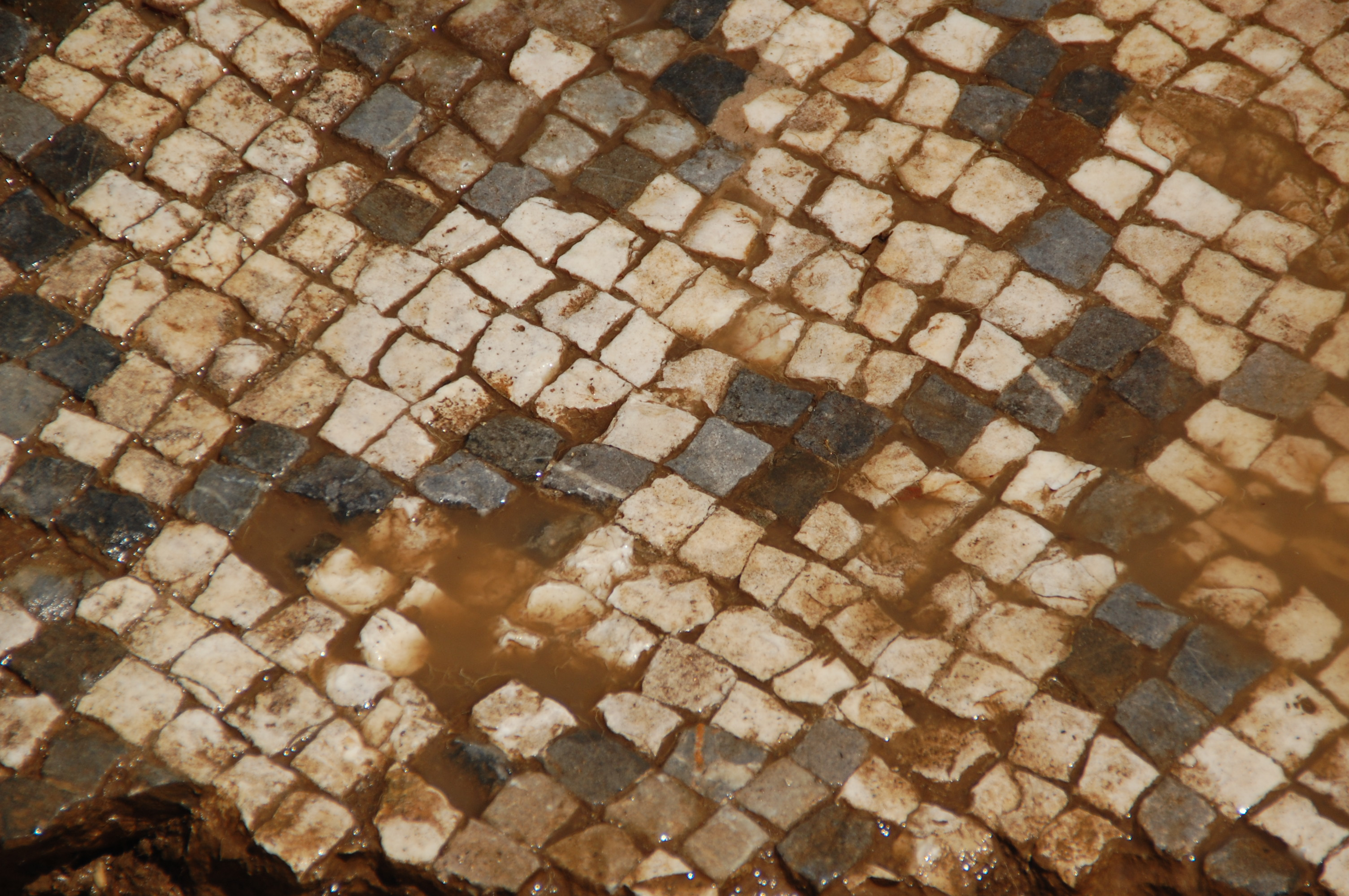 unl archaeological team unearths giant roman mosaic in. Black Bedroom Furniture Sets. Home Design Ideas