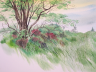 """Summer Grasses,"" a watercolor painting by Richard Schilling. Courtesy image."