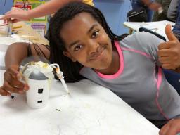 STEM Teaching Tools content copyright 2014-18 UW Institute for Science + Math Education.