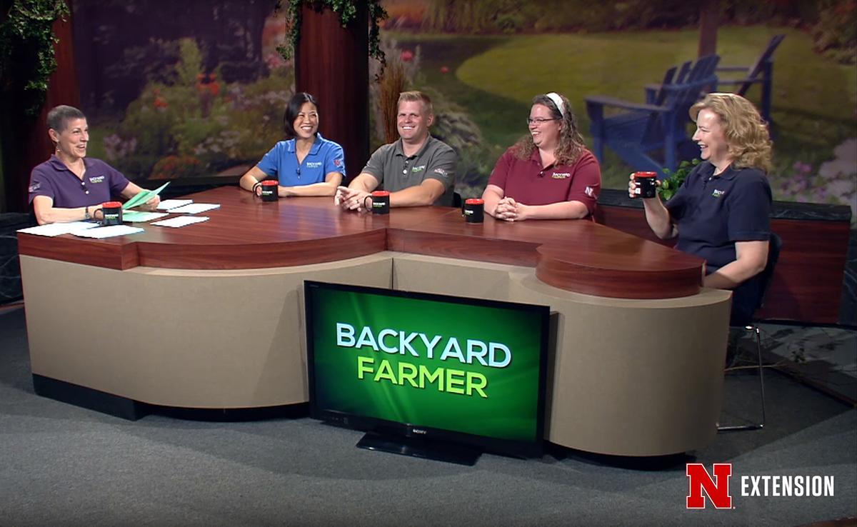 (Screenshot from Backyard Farmer)