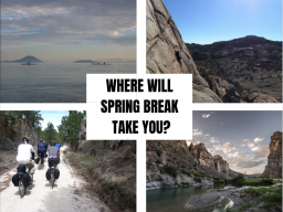 Where will Spring Break take you?