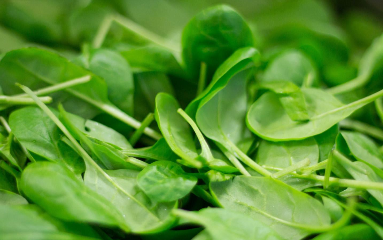 spinach-photo-1600x900.jpg