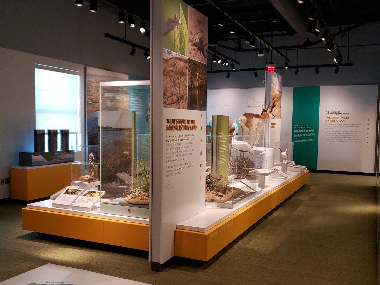 Part of the Cherish Nebraska exhibit in the University of Nebraska State Museum. | Troy Gilmore, Natural Resources