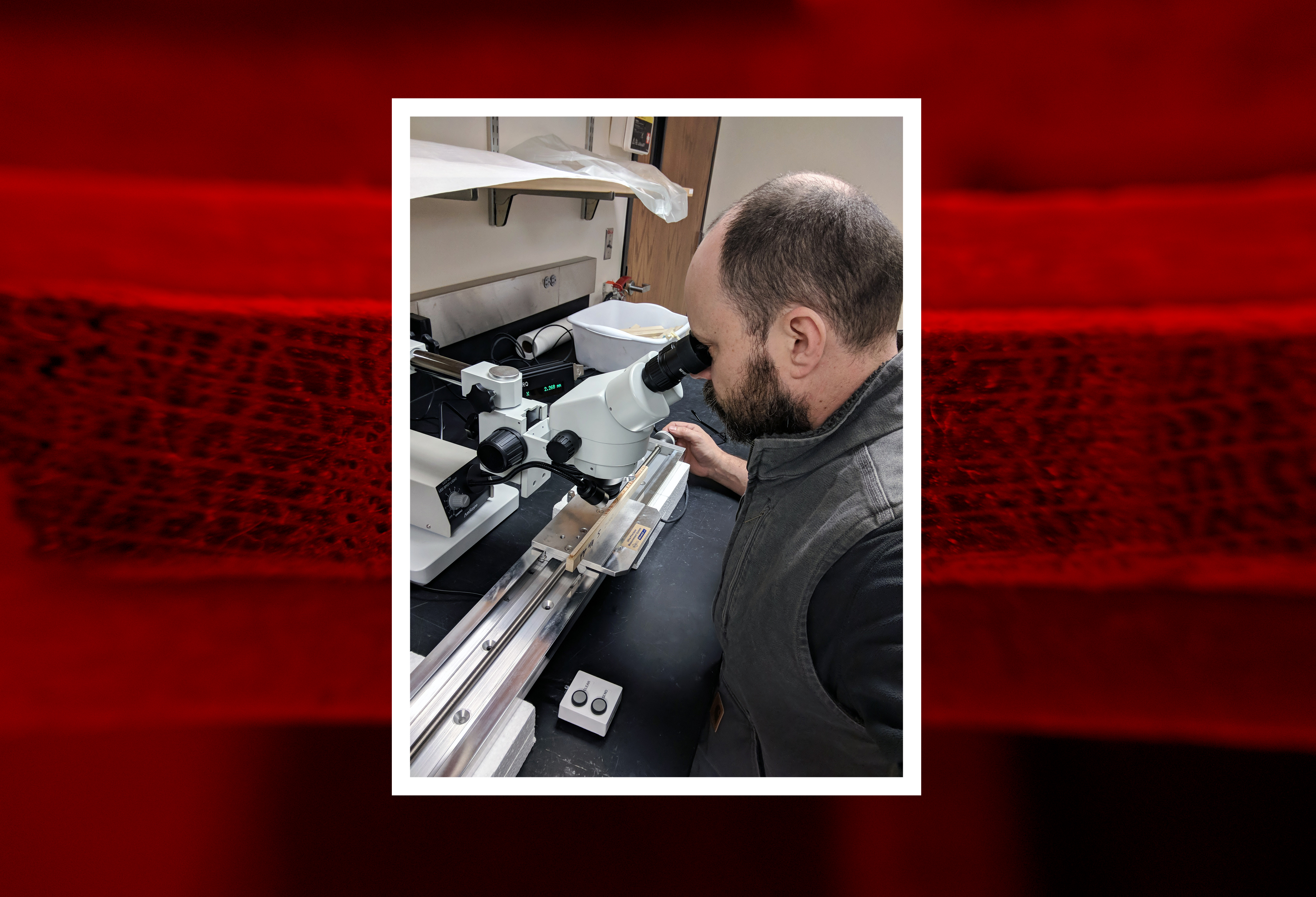 Eric North, assistant professor of practice at SNR, examines a tree core under a microscope. | Courtesy image