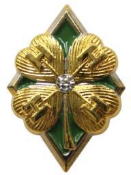 Diamond Clover Pin onwhite.jpg