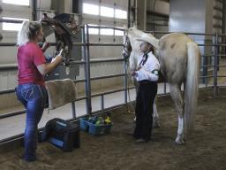 Horse Testings June 26 2018 - 04.jpg