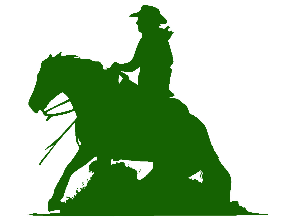 4 H Reining Clinic May 19 Announce University Of Nebraska Lincoln