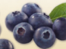 home_blueberries.png