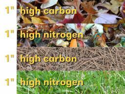 composting illustration.jpg