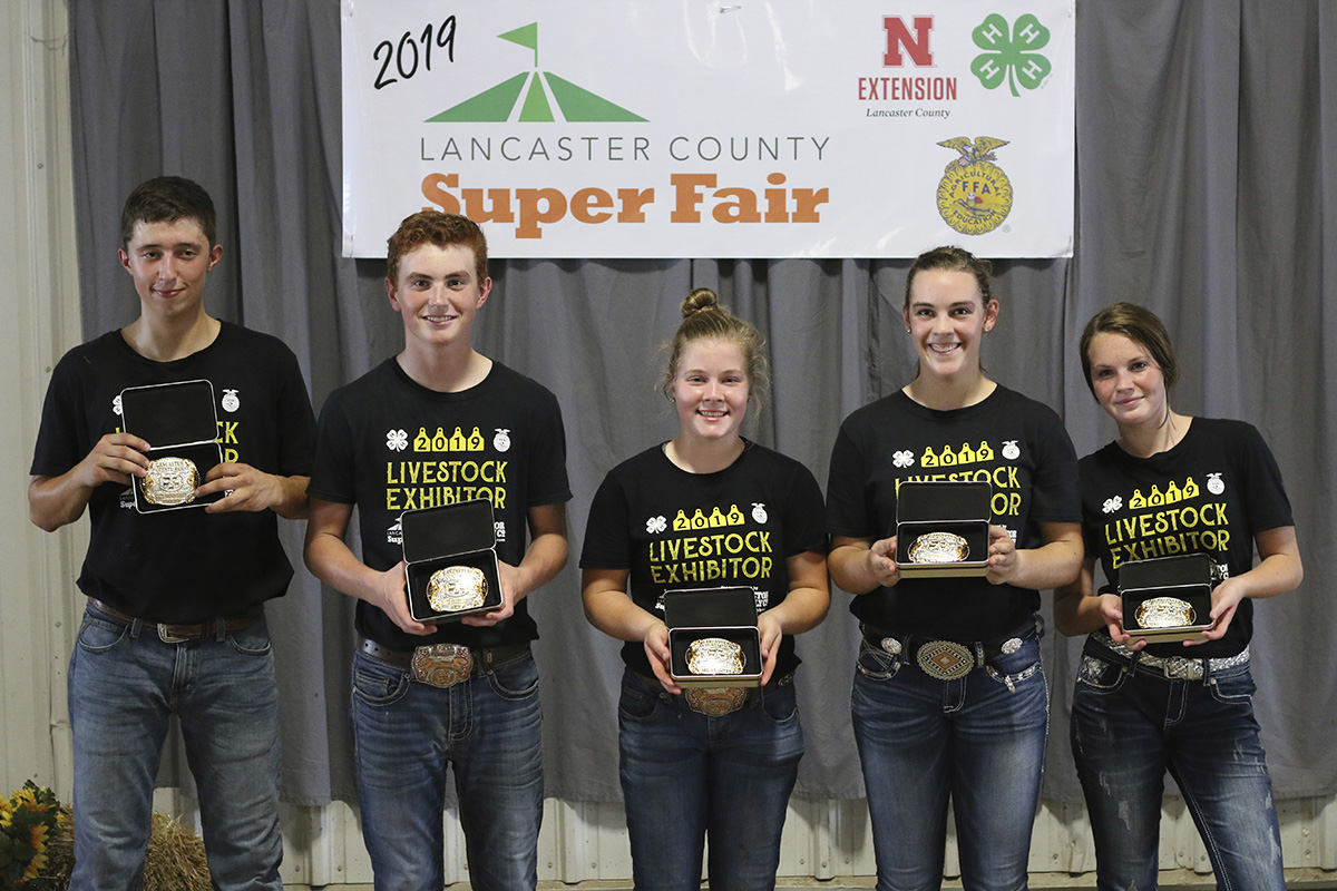 4-H/FFA Elite Showmanship Contest participants
