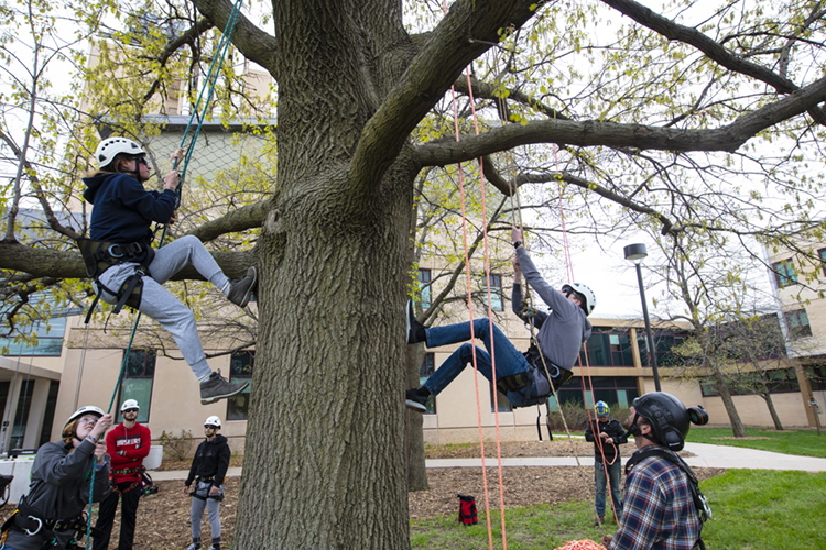 Students practice climbing trees during class in spring 2019. | Craig Chandler, University Communications
