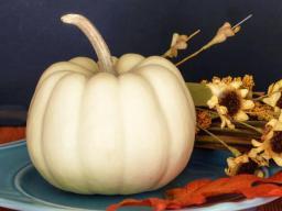 Thanksgiving-Pumpkin.jpg