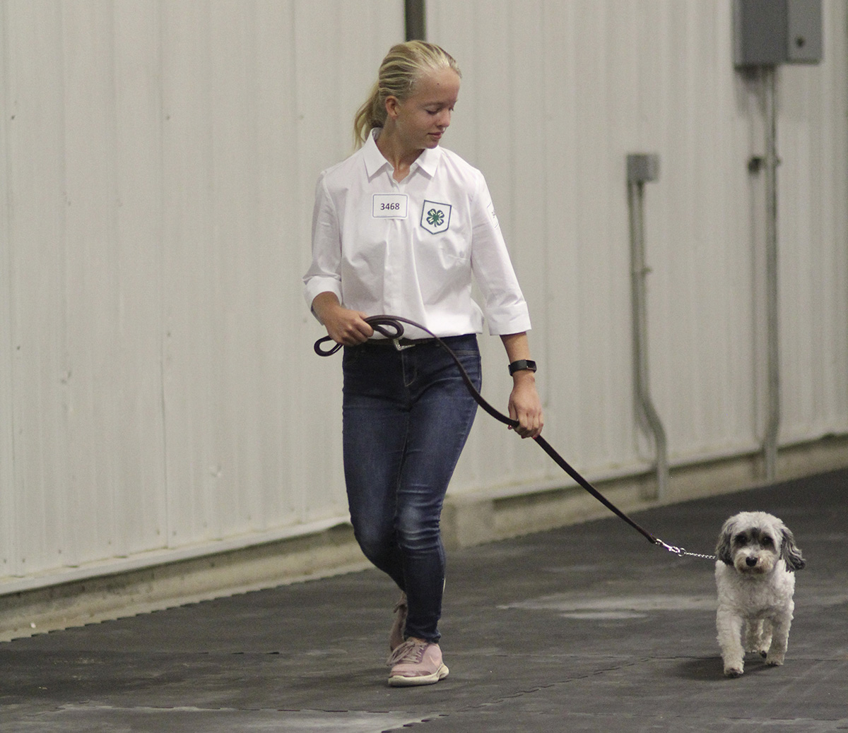 Dog Obedience at the 2019 Lancaster County Super Fair