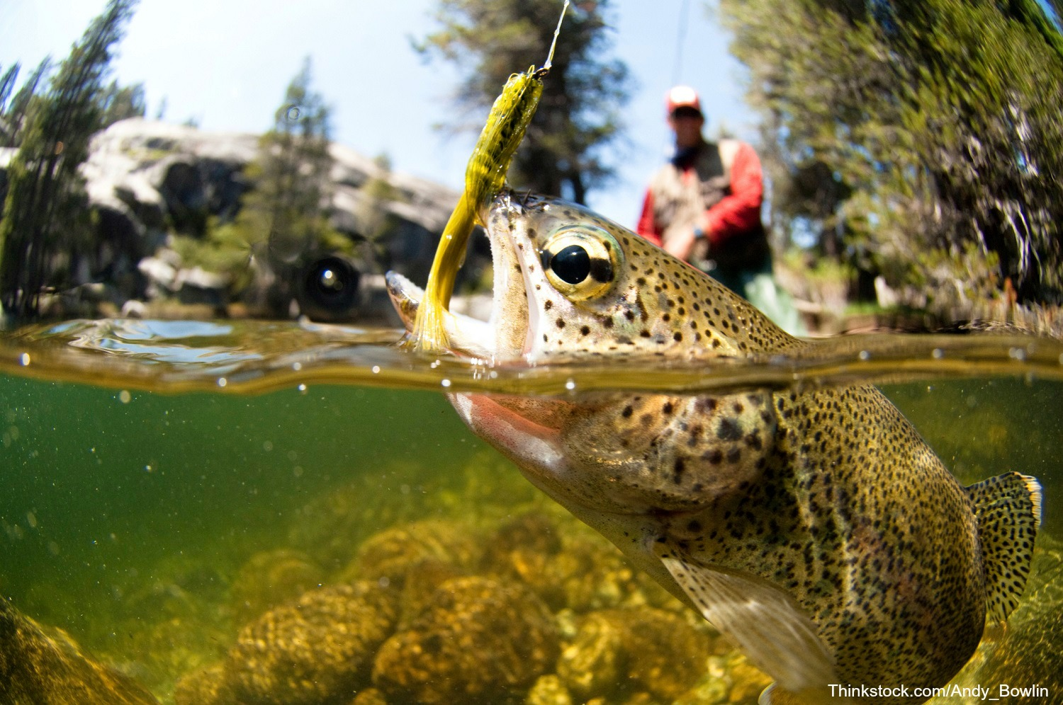 Learn the art of fly fishing through casting practices, outings, and more!
