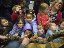 Kids get the opportunity to touch a snake during an event with Wildlife Encounters held by the School of Natural Resources at Hardin Hall on Tuesday, March 5, 2019. The event was part of the annual College of Agricultural Sciences and Natural Resources We
