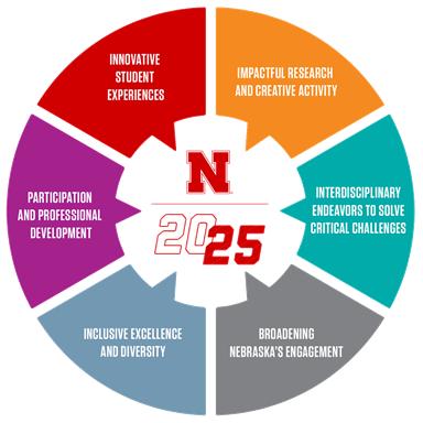 N2025 Strategic Plan Aims