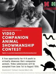 Comp animal showman.jpg