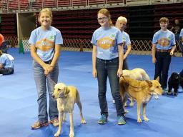State Dog Show Hero photo 20.jpg