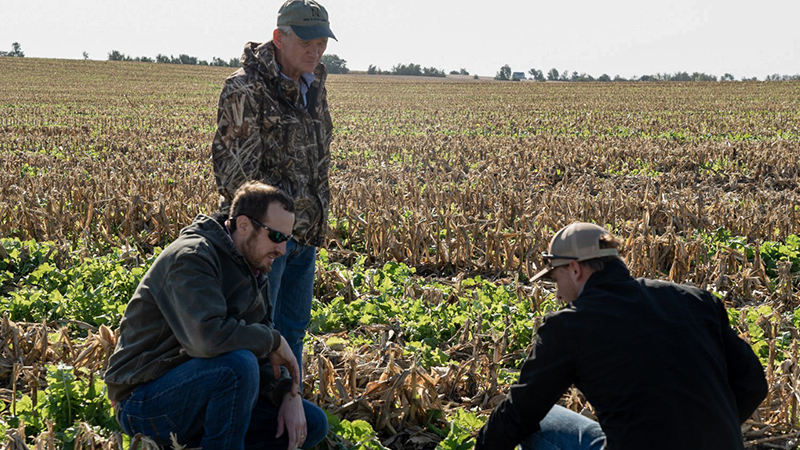 A targeted conservation survey led by University of Nebraska-Lincoln School of Natural Resources assistant professor Andrew Little is one of many SNR projects funded by a Nebraska Environmental Trust grant. Photo courtesy Nebraska Pheasant Forever