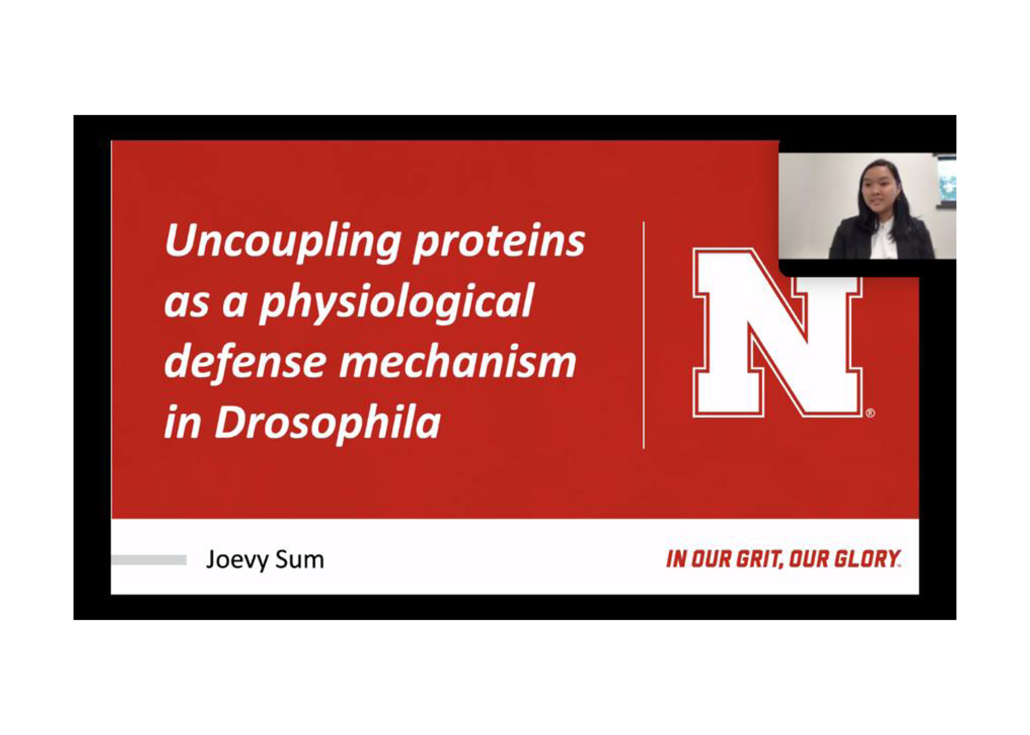 Joevy Sum, a junior at UNL, presents at ICUR on uncoupling proteins.