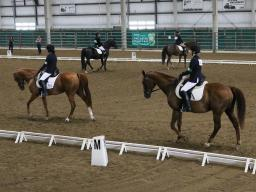 Lancaster County has the largest county fair 4-H horse show in the state