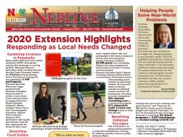 Highlight Report p1 thumbnail.jpg