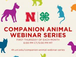 Companion-Animal-Webinar-Series.jpg