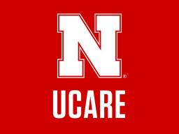 The UCARE program pairs undergraduate students with faculty mentors to engage in research and creative activities.