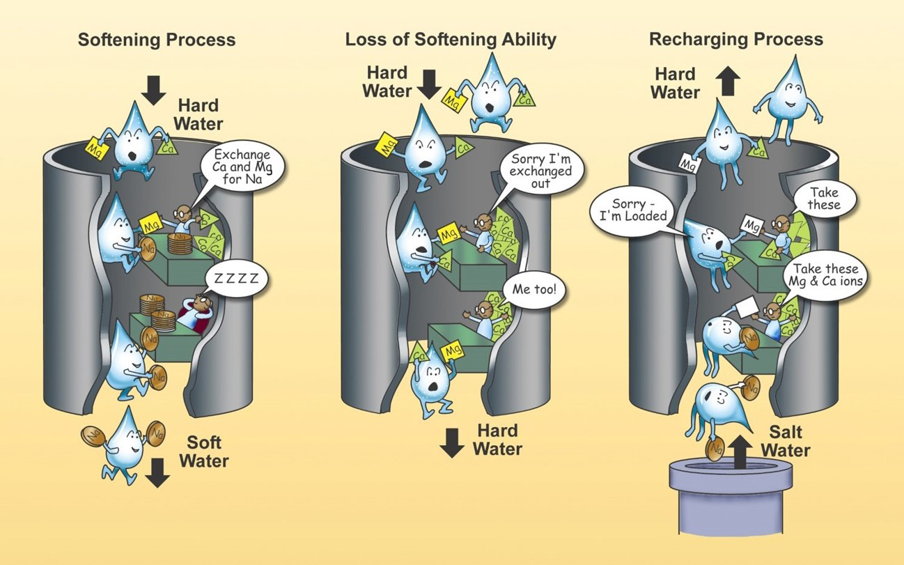 A simple overview of how the water softening process works. As hard water enters the water softener, it filters through a resin that is supersaturated with a sodium (Na) brine. For complete caption, see end of article.