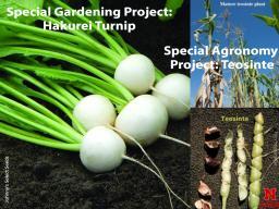 Special Garden & Agronomy 2021.jpg