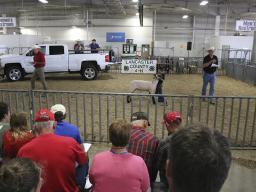 2019 Lancaster County 4-H/FFA Livestock Premium Auction