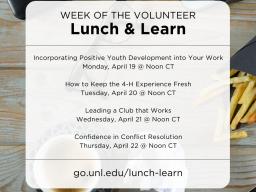Week-of-the-Volunteer-Lunch-Learn-3.png