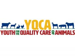YQCA logo for e-newsletter.jpg