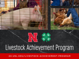 NE4H-Livestock-Achievement-Program.png