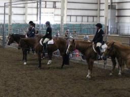 The 4-H Horse District Show in Lincoln, June 2021.