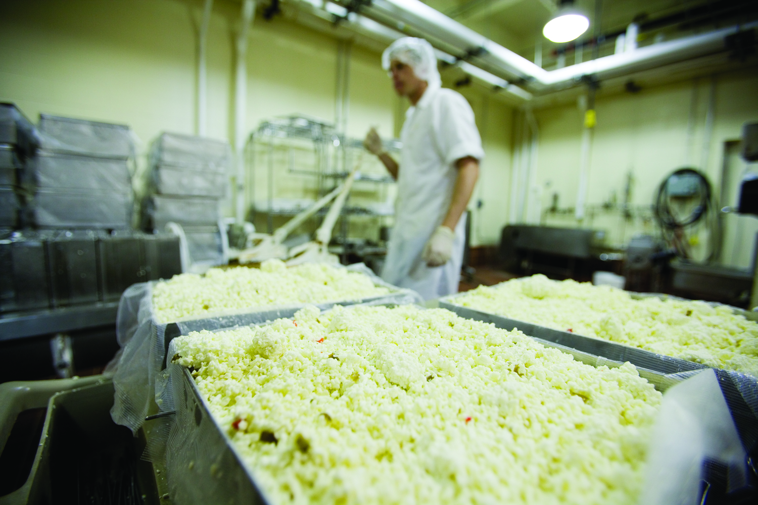 Workers make cheese for the UNL Dairy Store.