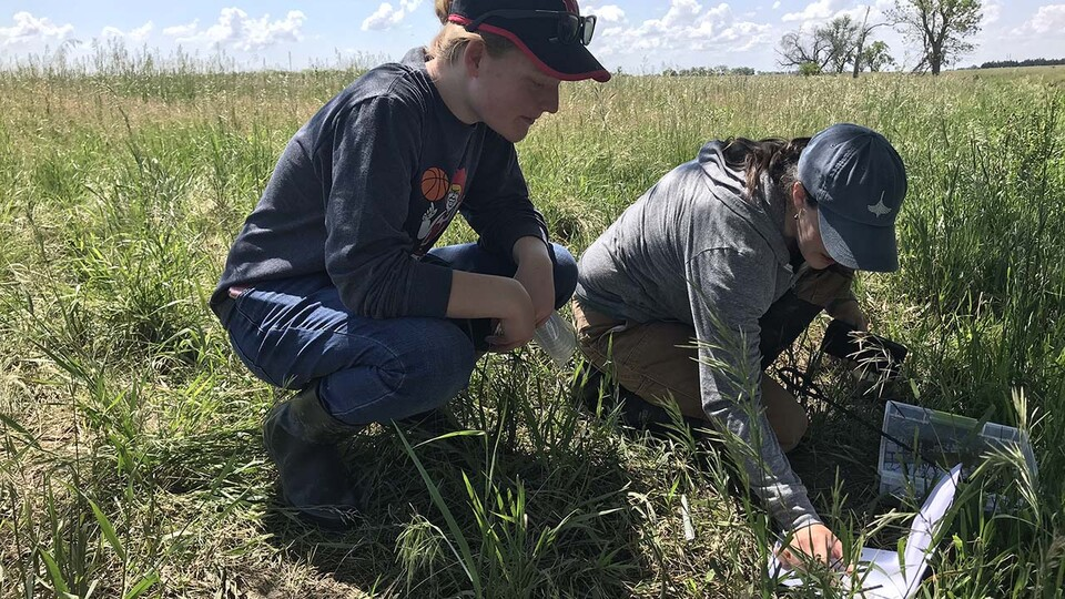 With support from the Cabela's Apprenticeship Research Project, Nebraska's Abigail Schoup (left) is working with a research team looking at how wastewater contamination linked to the AltEn ethanol plant near Mead has impacted frogs.