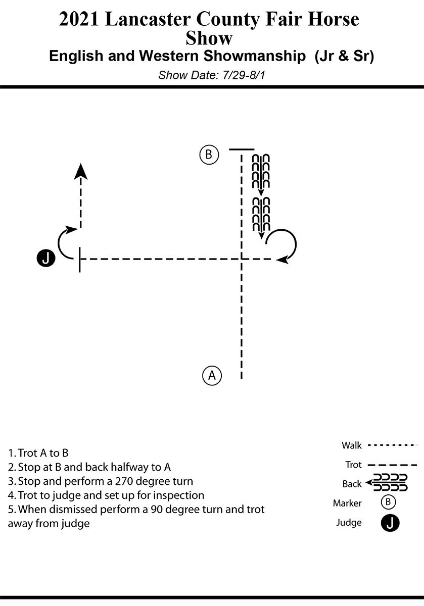 Horse Pattern Example.jpg