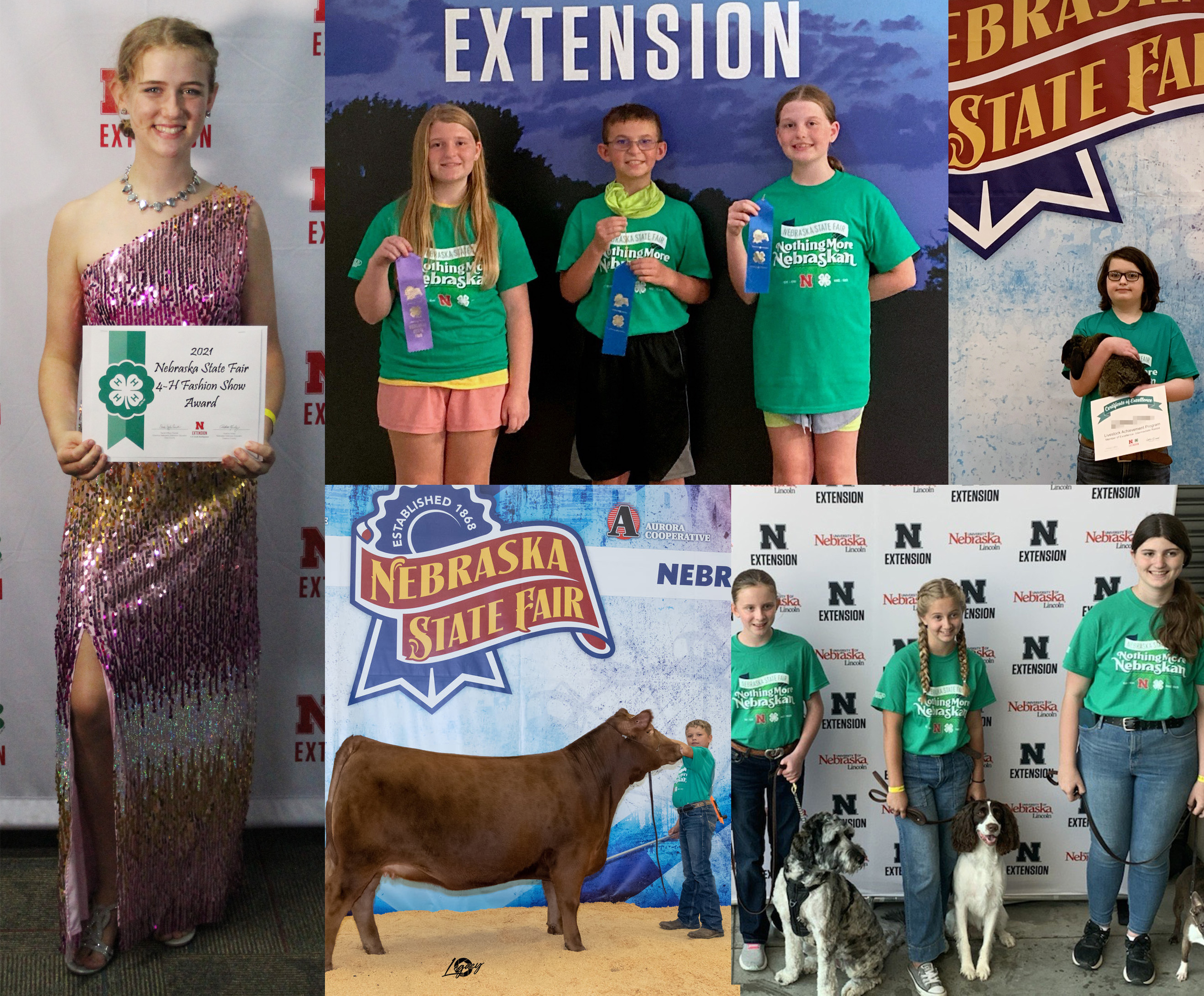 Clockwise from top left: 1 of 5 top Fashion Show awards, Horticulture Judging Contest Intermediate Team, Livestock Achievement Program Member of Excellence, several members of the 4 on the Floor 4-H dog club, Supreme Reserve Champion Breeding Heifer