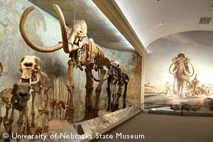 Elephant Hall.