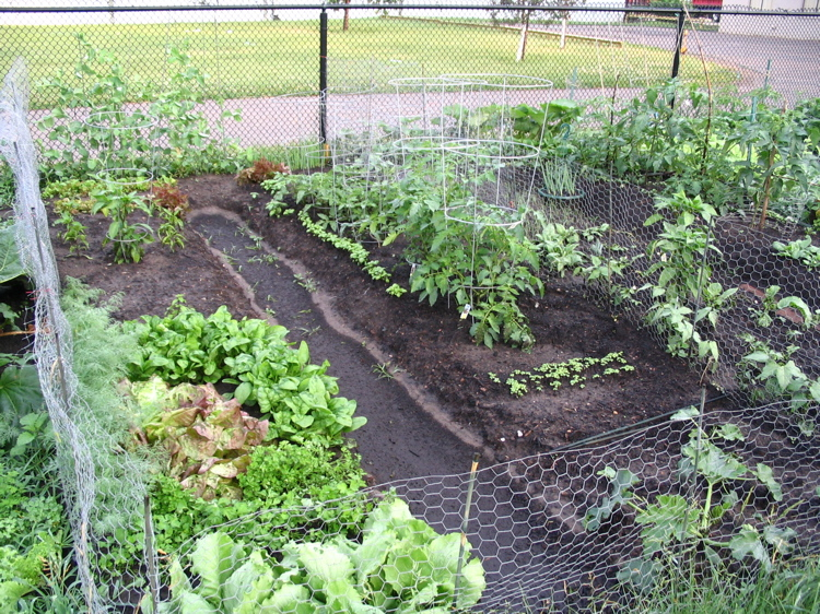 Select a garden plot starting 5:15 p.m. March 28