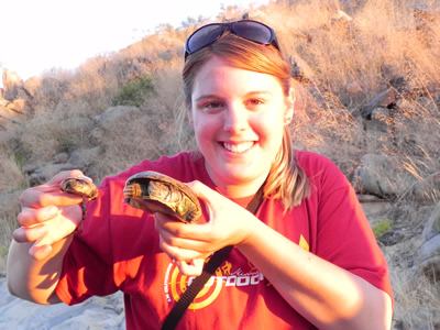 Monica Keep holds a pair of African Side-necked turtles in Namibia.