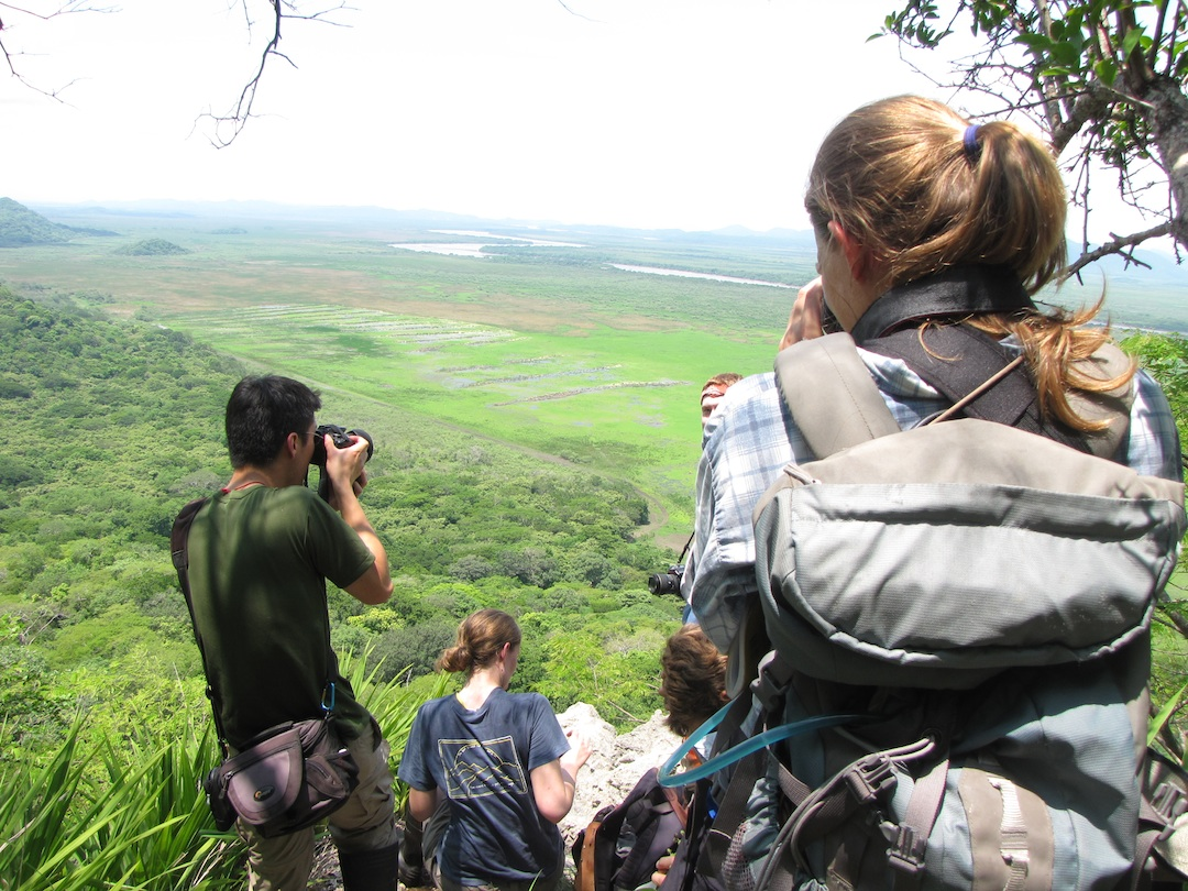 Students of the Tropical Plant Systematics course are pictured observing the marshlands at Palo Verde National Park in Costa Rica in June.