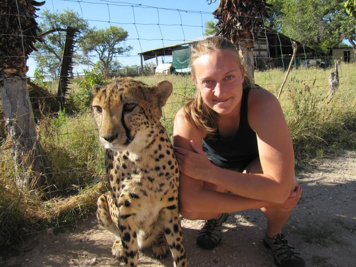 Katherine Lawry, now a graduate student at UNL's School of Natural Resources, is seen here with a cheetah during a study-abroad trip to Namibia, Africa in 2011. (Photo courtesy)