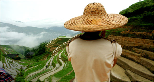 "A farmer at the Longji rice terraces in ""China Revealed,"" a documentary by Discovery."