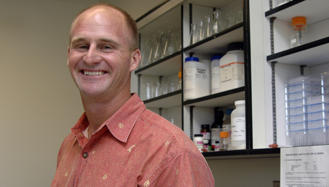 Jay Storz was named Susan J. Rosowski Associate Professor of Biological Sciences. He and six other UNL faculty members will be honored April 14.