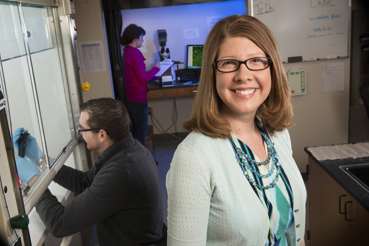 Angela Pannier, a UNL biological systems engineer, is using nanotechnology to develop a gene delivery tool. (Craig Chandler / University Communications)