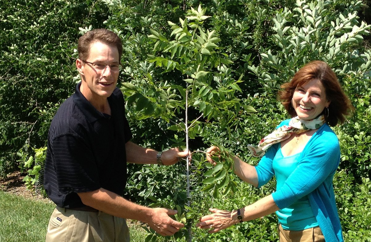 """Plant experts Kim Todd and Justin Evertson stand next to a bitternut hickory tree on East Campus. The duo will lead the """"Beneficial Backyards"""" Sunday with a Scientist program on July 21."""