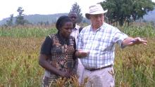 Charles Wortmann working with Ugandan producers on fertilizer research.