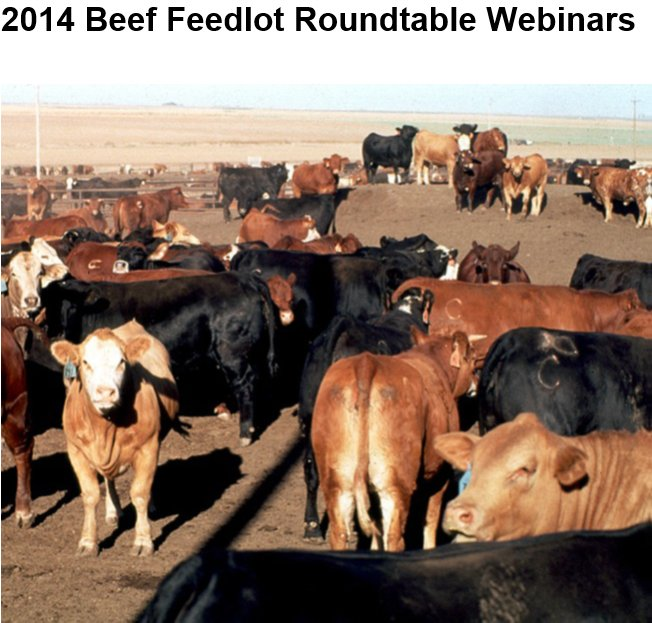 2014 Beef Feedlot Roundtable Webinars Are Now Available On-line.